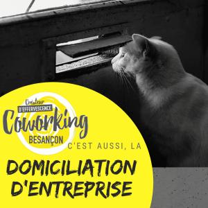 Adresse professionnelle, domiciliation entreprise à Besançon dans le Doubs (25)